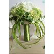 Zielony i biały mecz piłki jedwabiu chryzantemy oblubienicy gospodarstwa kwiaty